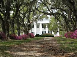 The Cottage Alexandria La by 81 Best Home Town Images On Pinterest Alexandria Southern Charm