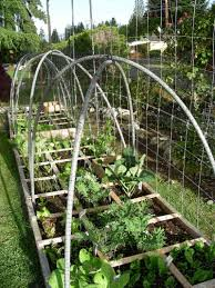 more benefits of netting