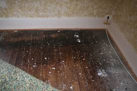 Laminate Flooring Issues Ohw U2022 View Topic Wood Floor Issues