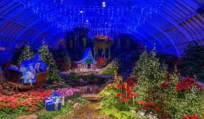 phipps conservatory christmas lights 10 things to look forward to for pittsburgh s holiday season