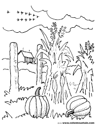 corn stalk coloring page free download