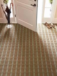 simple carpet maintenance steps diy