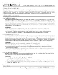 Resume Summary Statement Samples by Executive Summary Resume Example Example Of Executive Resume New