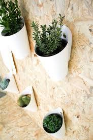 Garden Wall Decor Ideas Outdoor Herb Garden Ideas The Idea Room