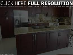 Facelift Kitchen Cabinets Cabinet Refacing Tampa Bay Best Home Furniture Decoration