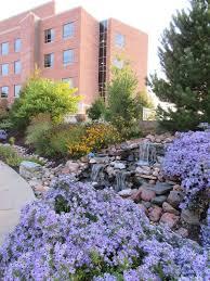 beautiful healing garden rotary botanical gardens