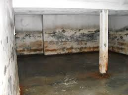 Getting Rid Of Mold In Basement by The Grave Impact Of A Moldy Basement In Saginaw Mi 48603
