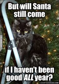 Internet Meme Cat - will santa still come cat christmas meme