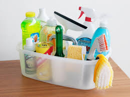 sabrina soto cleaning caddy essentials hgtv related