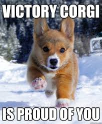 Proud Of You Meme - victory corgi is proud of you victory corgi quickmeme