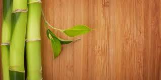 bamboo hardwood floors an eco durable choice