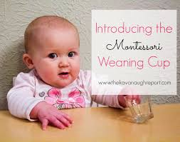 Montessori Weaning Table by Introducing The Weaning Cup
