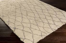 Wool Rug Cleaning Service Area Rugs Jacksonville Fl Area Oriental Rug Cleaning Carpet