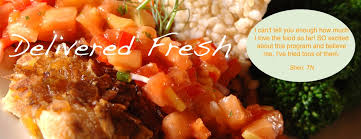 healthy food delivery program prepared meal delivery service