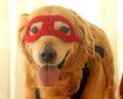 Halloween Costume Large Dogs Super Hero Dog Costume Super Hero Mask Dogs Super Hero