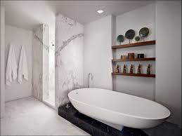 bathroom magnificent bathtub ideas modern bathroom fixtures