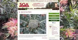 100 best gardening blogs follow this 2017