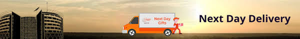 next day delivery gifts send next day delivery gifts in delhi country oven
