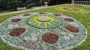 Fragrant Bedding Plants Best Bedding Plants For Beautiful Garden Suitable Herbal Species
