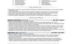 Finance Manager Resume Format Automotive Finance Manager Resume Sample Account Manager Resume