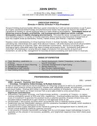 executive resume templates old version hr executive free resume