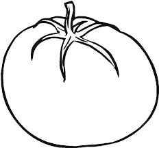 vegetable tomatoes still green coloring pages for kids bce