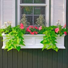 Wall Mounted Planters by Window Boxes U0026 Wall Mount Planters Signature Hardware