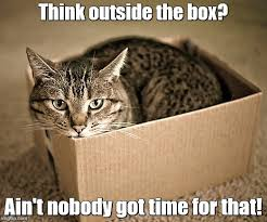 Thinking Cat Meme - cat meme thinking outside the box binge thinking