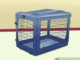 Dog Crate With Bathroom by How To Potty Train A Puppy 15 Steps With Pictures