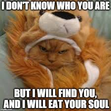 I Don T Know Meme - i don t know who you are but i will find you and i will eat your