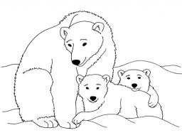 kermode bear bear coloring bear care bears printable coloring