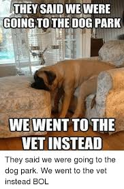 Dog At Vet Meme - they said we were going to the dog park we went tothe vet instead