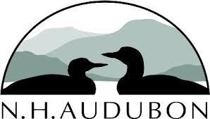 Birds In Your Backyard Help Nh Audubon Count The Birds In Your Backyard Sunflower