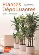 plantes d駱olluantes chambre ombre peu d entretien plantes d intérieur increvables