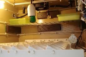 diy automatic egg incubator