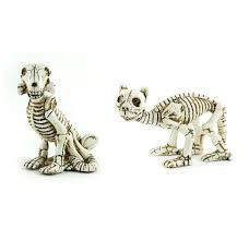 Dog Skeleton Halloween Wholesale Feathers Craft Feathers Artificial Birds
