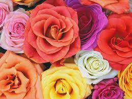 wedding flowers average cost how much do wedding flowers cost average cost of flowers for