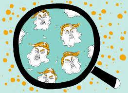 les chambres à gaz ont elles vraiment existées des chercheurs ont créé une bactérie l adn n existe pas sur terre