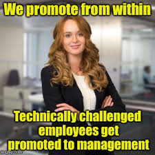 Project Management Meme - and totally incompetent employees get promoted to project management