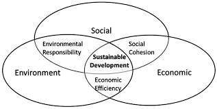 sustainability free full text implementation of circular