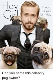 Pug Birthday Meme - hey i heard its your birthday can you name this celebrity pug owner