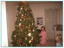 brown christmas tree sale real christmas tree sale