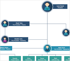 org chart software to create organization charts online creately
