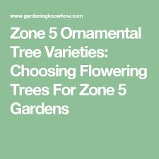 zone 5 ornamental tree varieties choosing flowering trees for