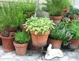 herb planter ideas container herb garden ideas how to plant a container herb garden