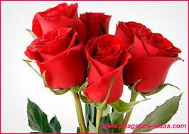 imagenes para enamorar con flores envio de flores a domicilio el mejor regalo para enamorar
