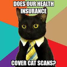 Insurance Meme - business cat does our health insurance cover cat scans meme
