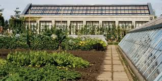 Types Of Urban Gardening Urban Agriculture Urban Green Blue Grids