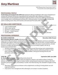Resume Examples Nursing by Professional Nurse Resume Format