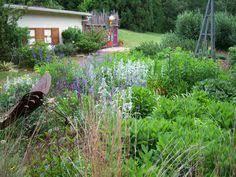 Clemson Botanical Garden by Sc Botanical Garden Clemson South Carolina Pinterest